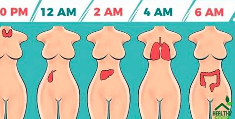 Lūk, kāpēc jūs mostaties katru nakti vienā un tajā pašā laikā