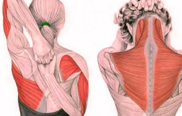 Vingrinājumi kaklam – atbrīvo no saspringuma un normalizē spiedienu