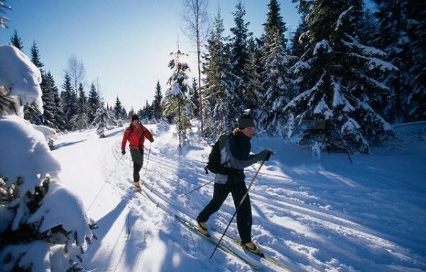 Distanču slēpošana Latvijā - kurp doties?