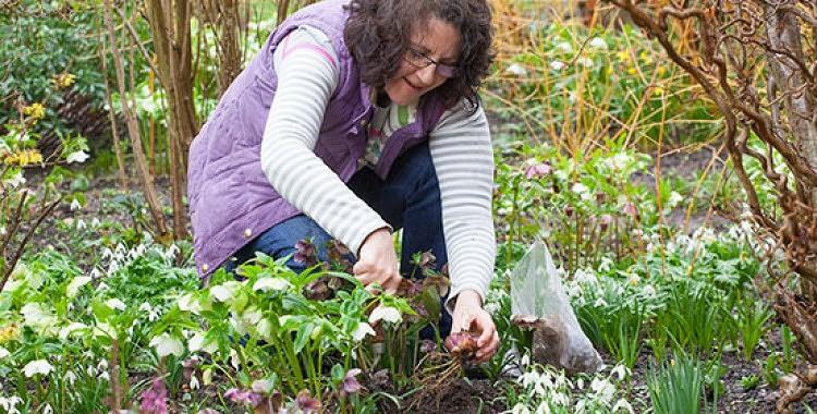 Dārza darbi Martā