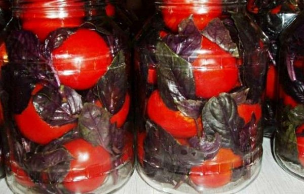 Marinēti tomāti ar baziliku