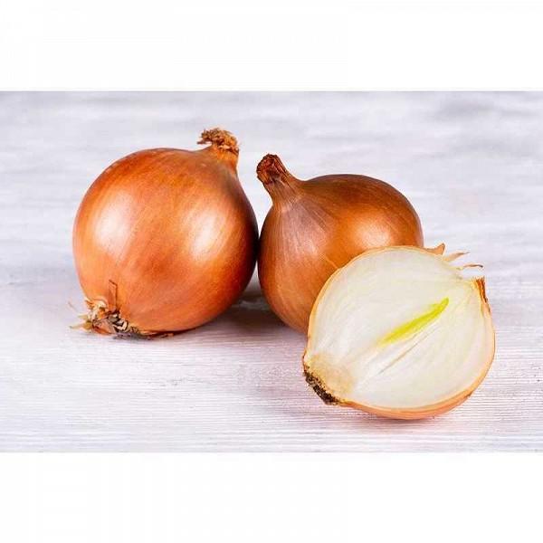 картинки луковицы лука рождения