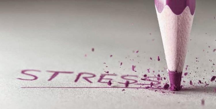 Stress un trauksmes izjūta nu jau ir  divas no visbiežāk sastopamajām mūsdienu pasaules problēmām cilvēku dzīvēs