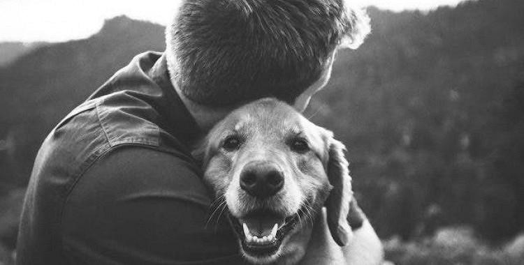 Kā pārdzīvot sava mīļotā suņa aiziešanu: kāpēc suņa zaudēšana ir tik ļoti sāpīga