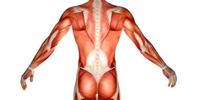 Statiskā stiepšanās:  vingrojumi ķermeņa asimetrijas iztaisnošanai