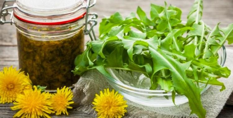 Lieliski vitamīni pavasarī - pienenes, nātres, gārsas, lakši tavai veselībai
