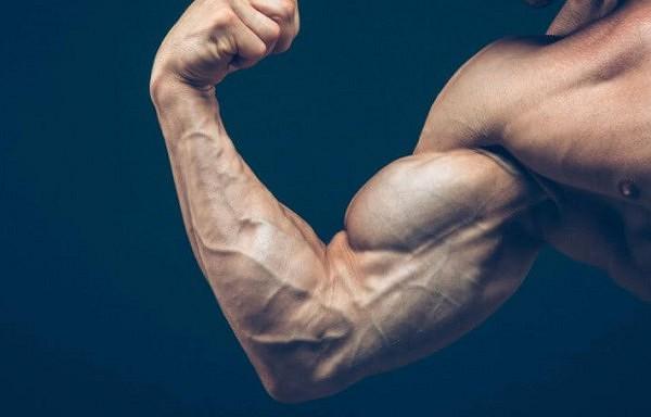 Top 10 produkti ko lietot uzturā, lai ātrāk pieaug muskuļmasa