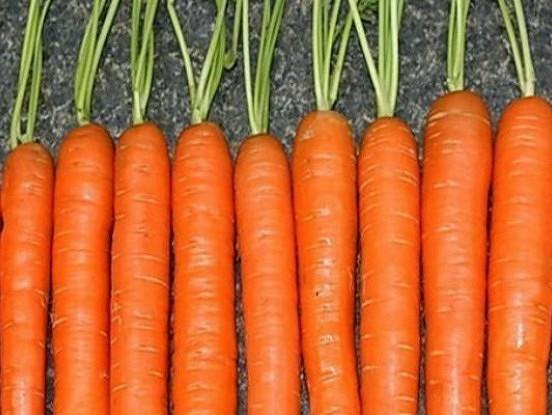 Burkānu audzēšanas noslēpumi