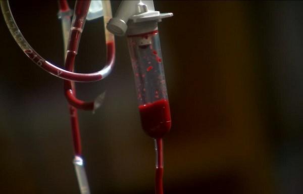 11 asins analīžu rādītāji, par kuriem jums būtu jāzina