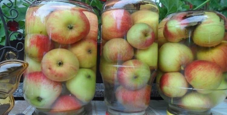 Visvienkāršākā skābētu ābolu recepte. Līdz ziemai jau būs apēsti!